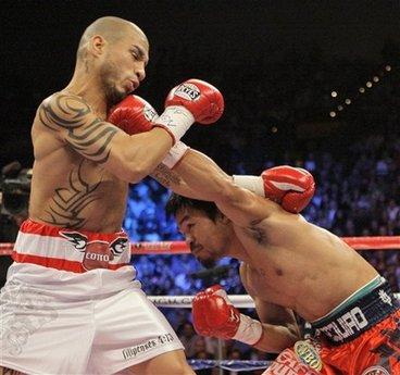 Pacquiao Cotto Boxing